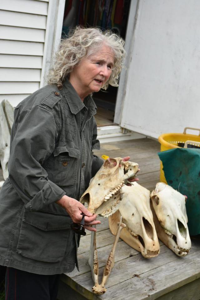 Она уже 40 лет живёт в одиночестве на удаленном острове, покрытом туманами