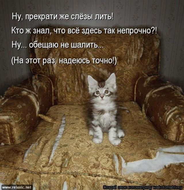Зоопозитивщики Стр.2