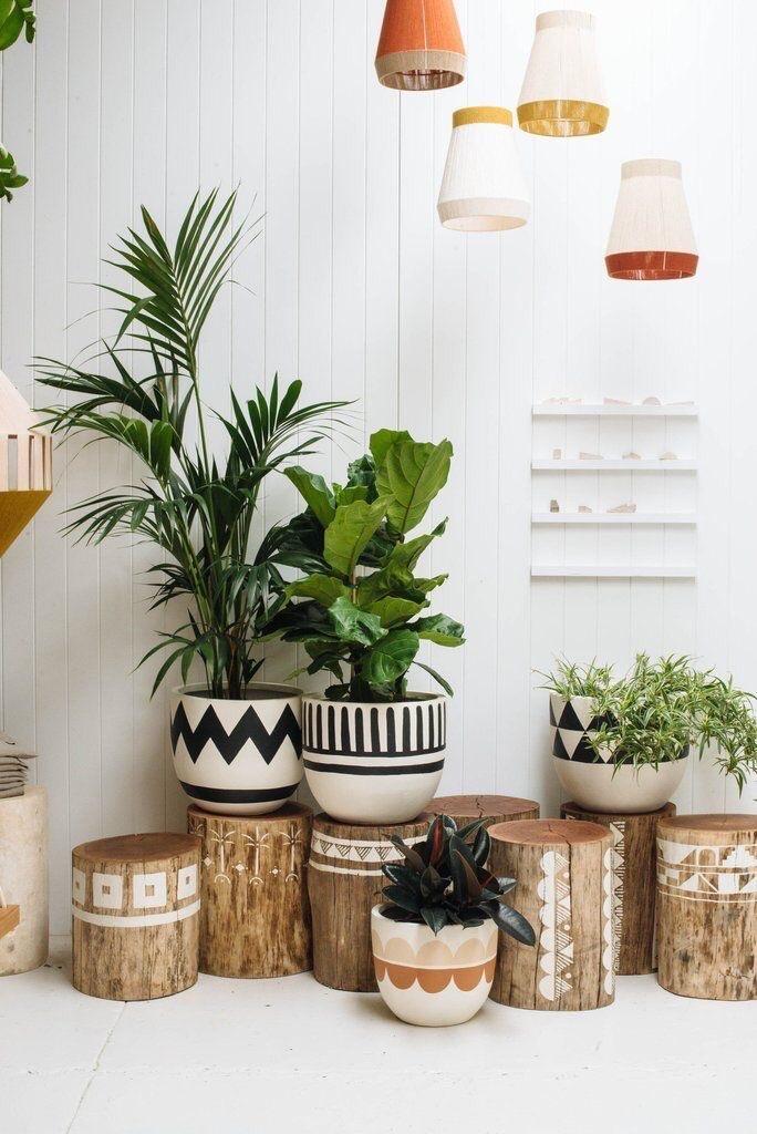 Идеи оформления домашних уголков с цветами 5