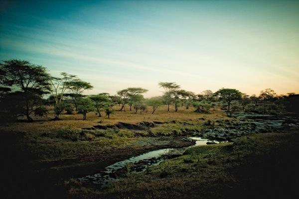 Танзания: 17 удивительных фотографий