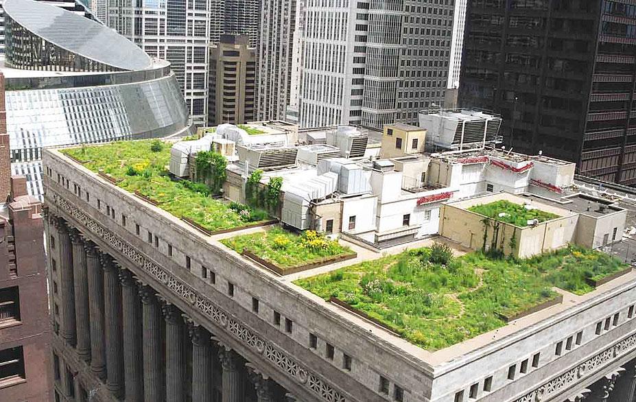 В Чикаго обустроили сад на крыше небоскреба