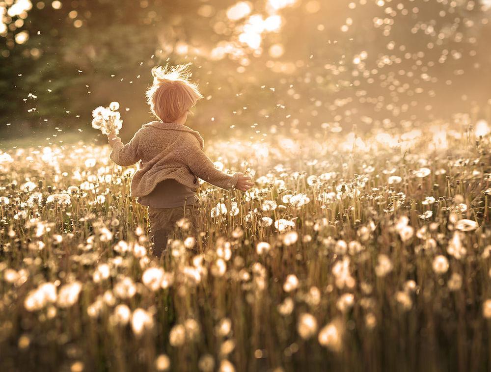 Счастье и дети — самое дорогое золото, что есть в мире, на фотографиях Елены Шумиловой