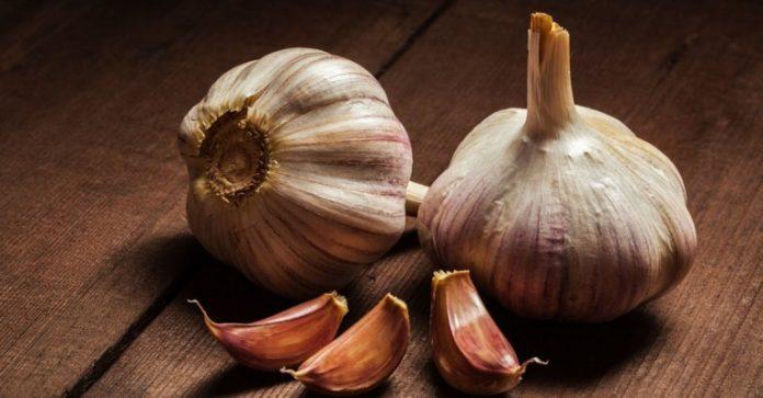 3 преимущества употребления чеснока на голодный желудок