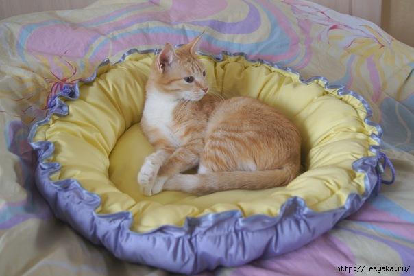 Лежанка для кота своими руками мастер класс