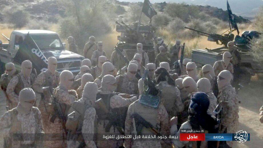 Численность иностранных боевиков Халифата была преувеличена