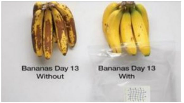 Узнайте, как сохранить фрукты свежими на 5 дней дольше! (видео)