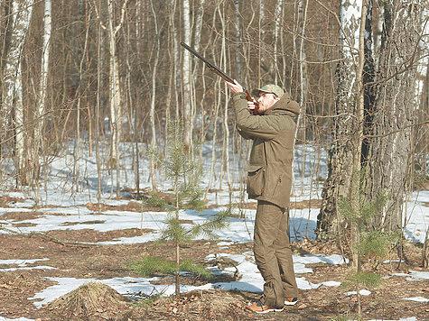 Вальдшнеп на мушке: правила успешной стрельбы