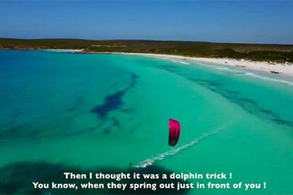 Серфер ушла от погони двухметровой акулы
