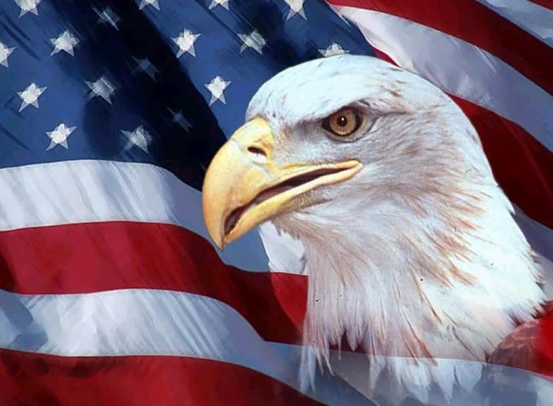 США - птица гордая, пока не пнёшь под жопу – не полетит
