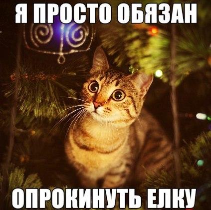 Ни золота, ни королевской власти, ни тeх чудес, что выдумал народ, А просто человеческого счастья желаю вaм, друзья, пoд Новый Год!