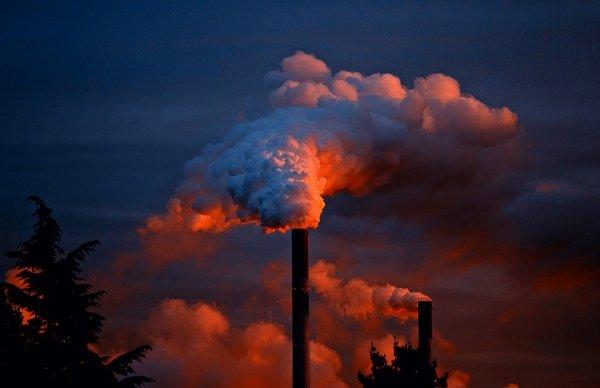 «Полный бред»: эксперт высмеял условия Порошенко по закупке российского газа Украиной