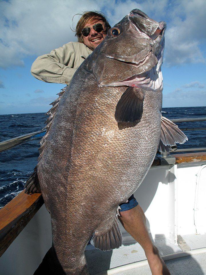 Вот такая рыбалочка у майоров вышла ...
