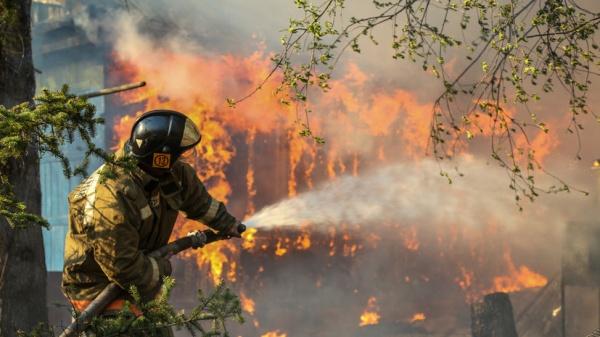 Засутки площадь лесных пожаров вСибири выросла вчетыре раза