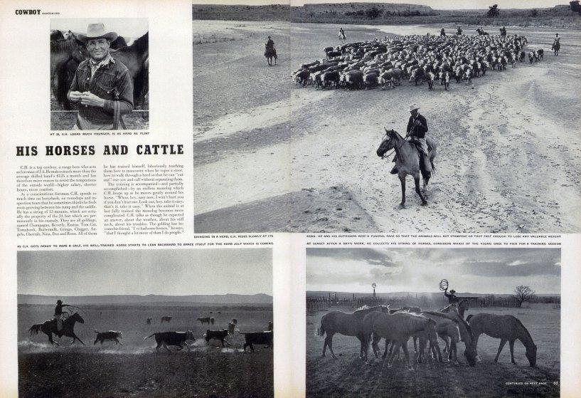 Американский ковбой