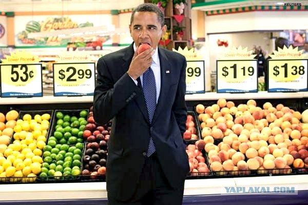 Съешь центнер польских яблок на зло Путину! Или хотя бы - понадкусывай!