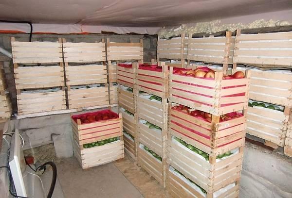 красные яблоки в ящиках