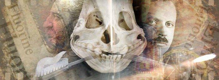 Большая зубная ложь. Информация к размышлению о вреде фтора
