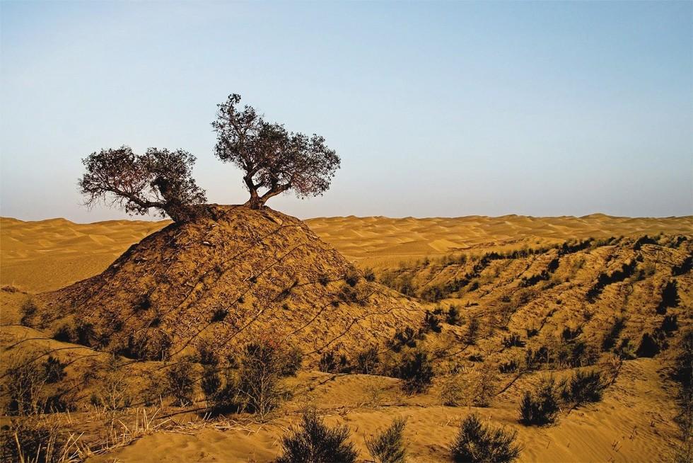 Такла Макан: пустыня смерти (Китай)