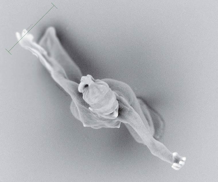 Нано-скульптуры Джонти Гурвица. Самые микроскопические фигуры людей в мире-12