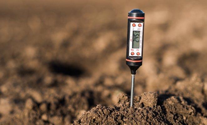 Кислотность почвы: определяем и регулируем
