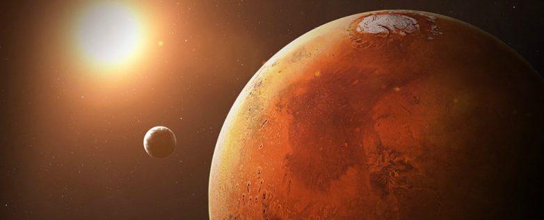 Российские учёные измерили продолжительность жизни живых организмов на Красной планете