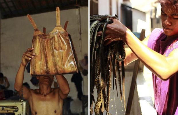 Такое оно производство сумок из змеиной кожи.