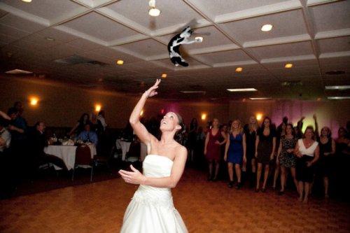 Летающие кошки вместо свадеб…