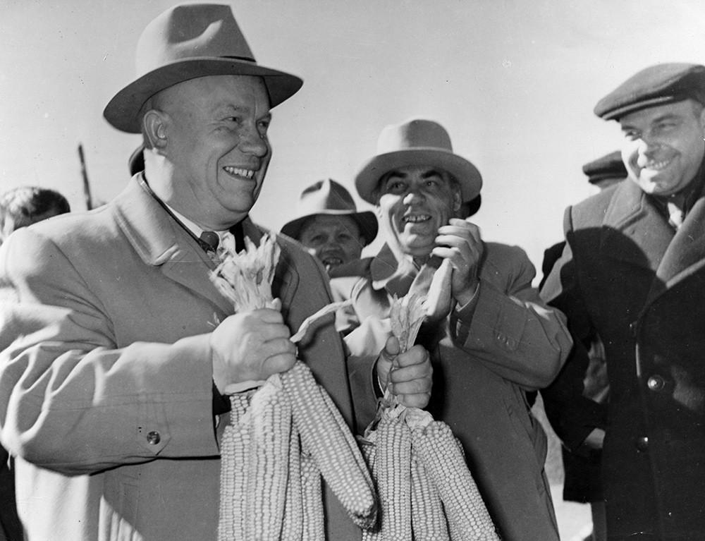 «Царица полей»: 65 лет назад Хрущёв реорганизовал сельское хозяйство СССР