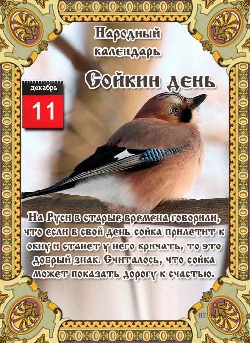 11 декабря Народный праздник «Сойкин день».