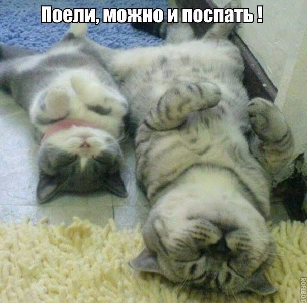 Правда жизни ))