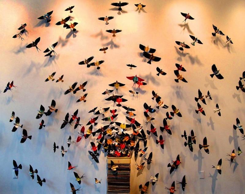 butterflies09 800x632 Бабочки как искусство