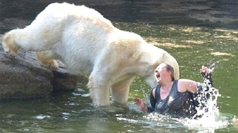 4. Нападение белого медведя на женщину в Берлинском зоопарке, 2009 г. дикие животные, нападение медведя, нападение хищника