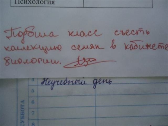 Безумно смешные записи учителей в школьных дневниках!