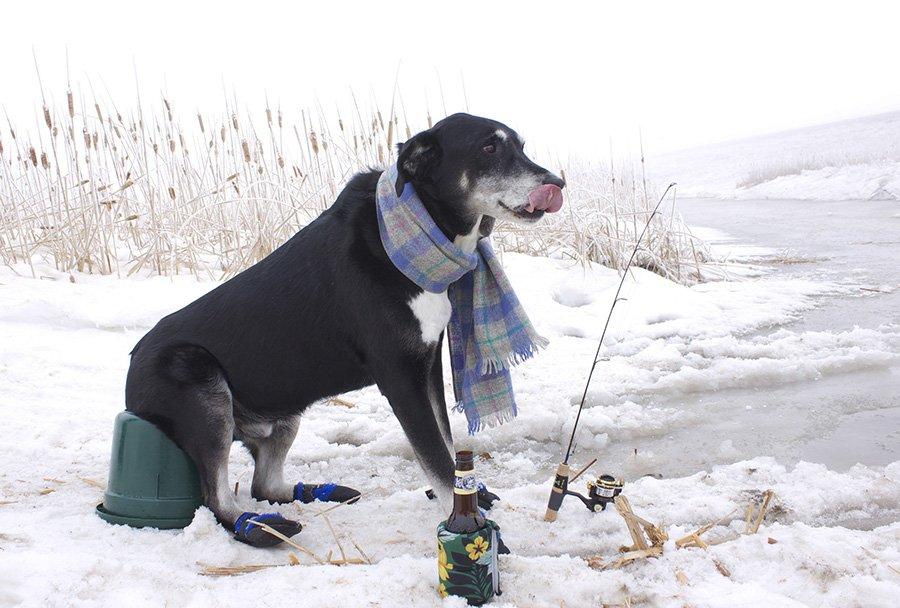 Особенности зимней рыбалки на леща