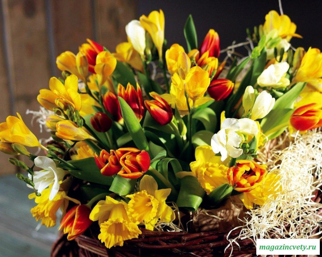 Флоротерапия: лечение с помощью цветов 745