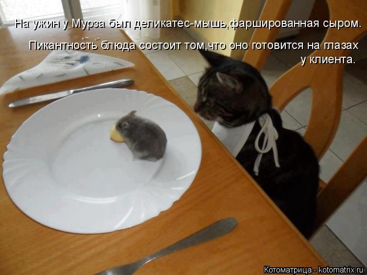 Котоматрица: На ужин у Мурза был деликатес-мышь,фаршированная сыром. у клиента. Пикантность блюда состоит том,что оно готовится на глазах