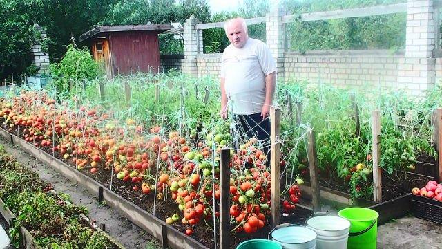 Сад и огород своими руками валерий украина