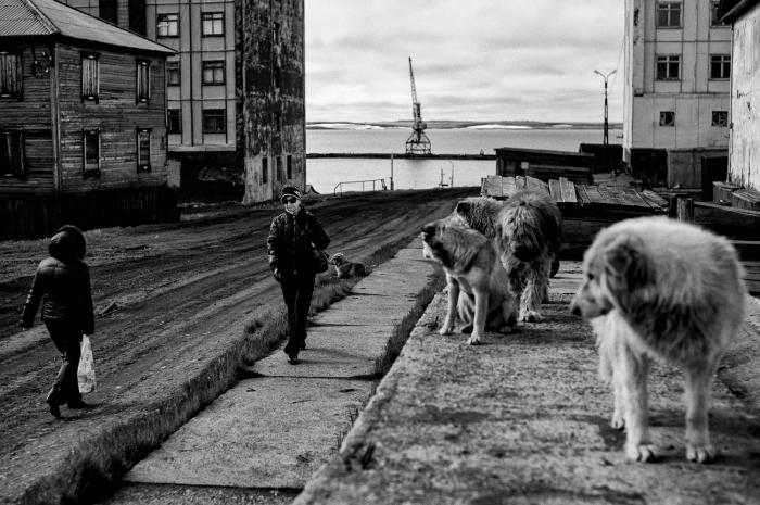 Диксон - самый северный населенный пункт России./Фото: img.yandex.ru