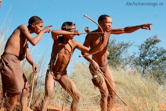Племена