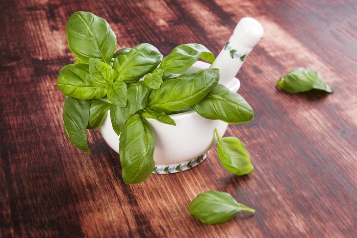 полезные травы для желудка