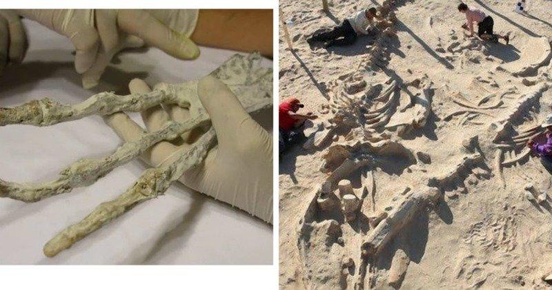 Пески времен — 10 загадочных находок, обнаруженных в пустынях по всему миру