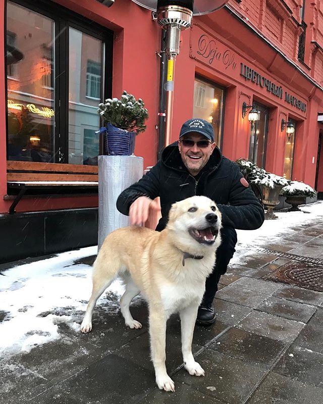 Егор Бероев ищет хозяев для собаки