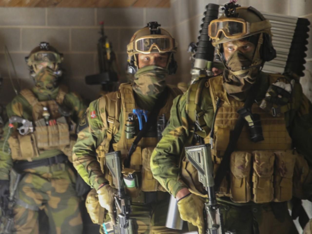 На линию соприкосновения ВСУ и сил ЛДНР прибыли наемники из Норвегии
