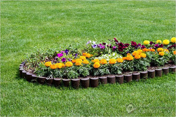Красивые клумбы в саду фото