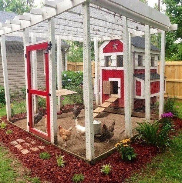 VIP курятник в саду
