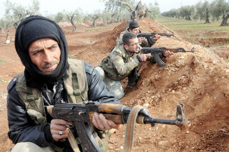 Госдеп: США выступают за единую Сирию без образования новых автономий