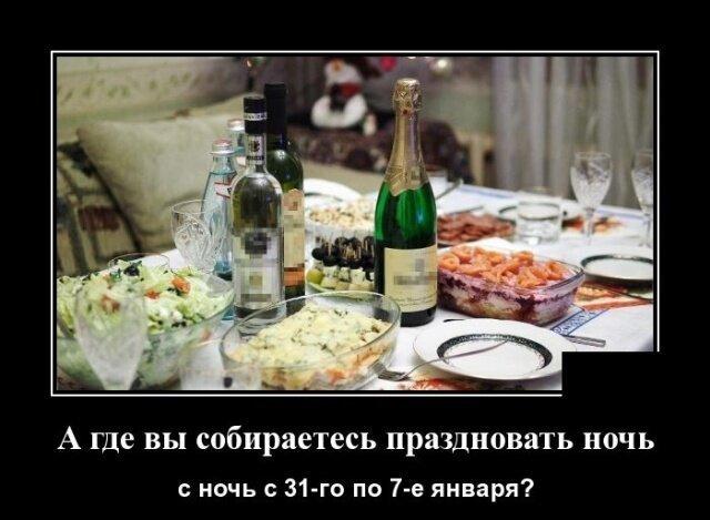 Новогодние демотиваторы (35 фото)