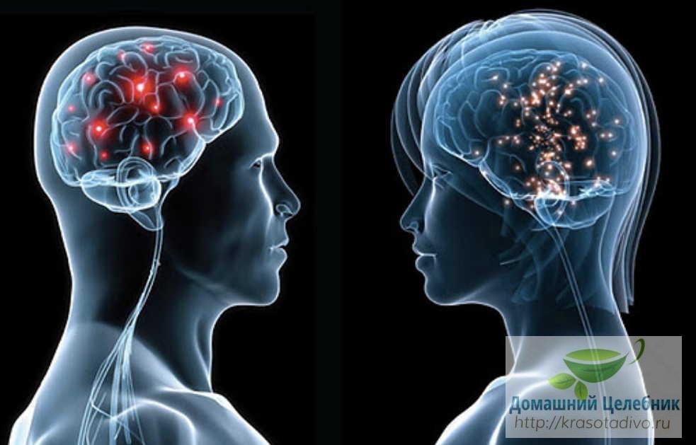 Нервная система после 40 лет…