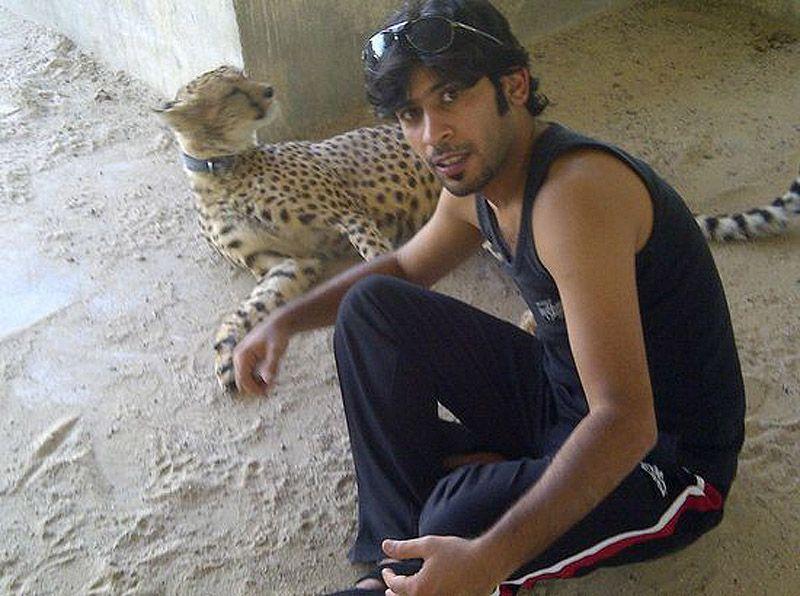 catsncars11 Хищные кошечки и дорогие машины: досуг арабского миллионера