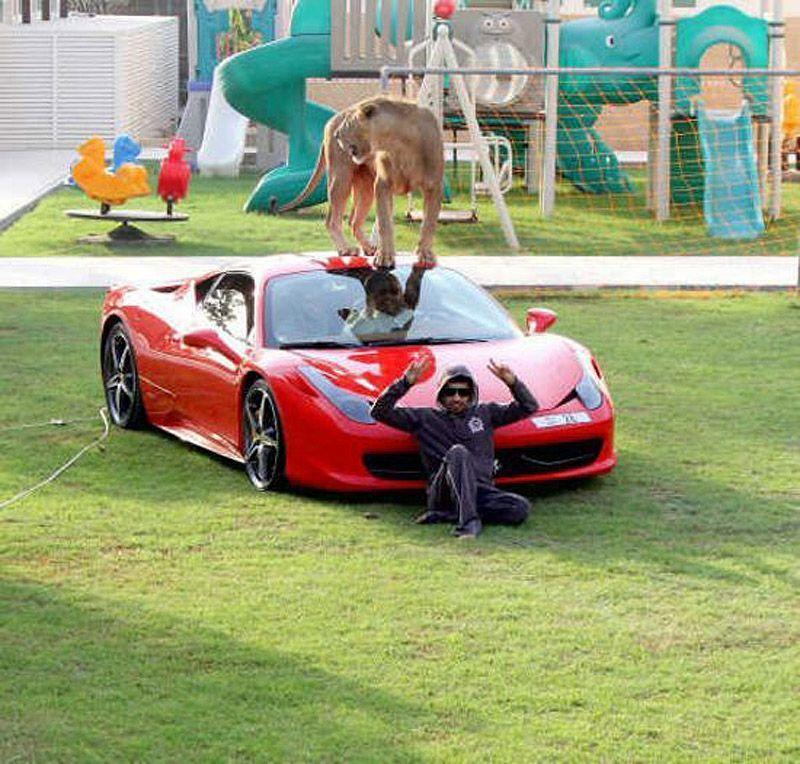 catsncars28 Хищные кошечки и дорогие машины: досуг арабского миллионера